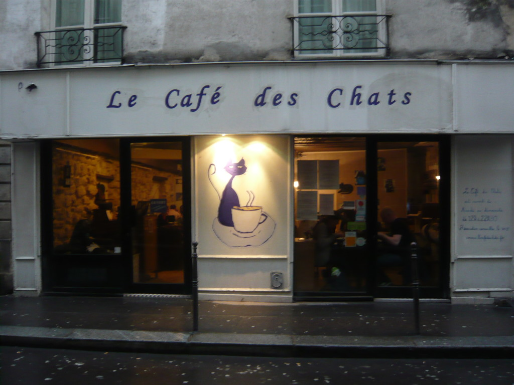 Goal Encouragement: Learning French, photo of a cat cafe in France